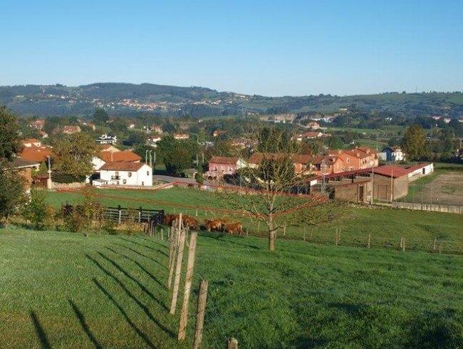 Terreno urbano en venta en Reocín por 498.000 €